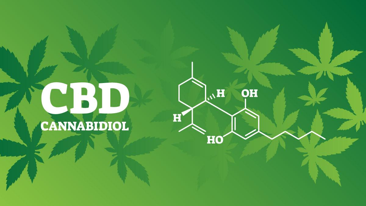Illustration of CBD's chemical formula on green hemp leaves background