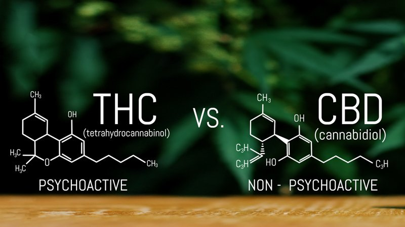 CBD Vs THC with Scientific Formula
