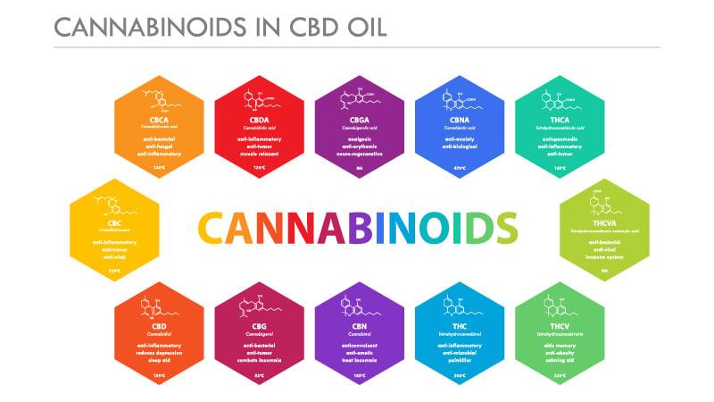 Cannabinoids in Full Spectrum Oil