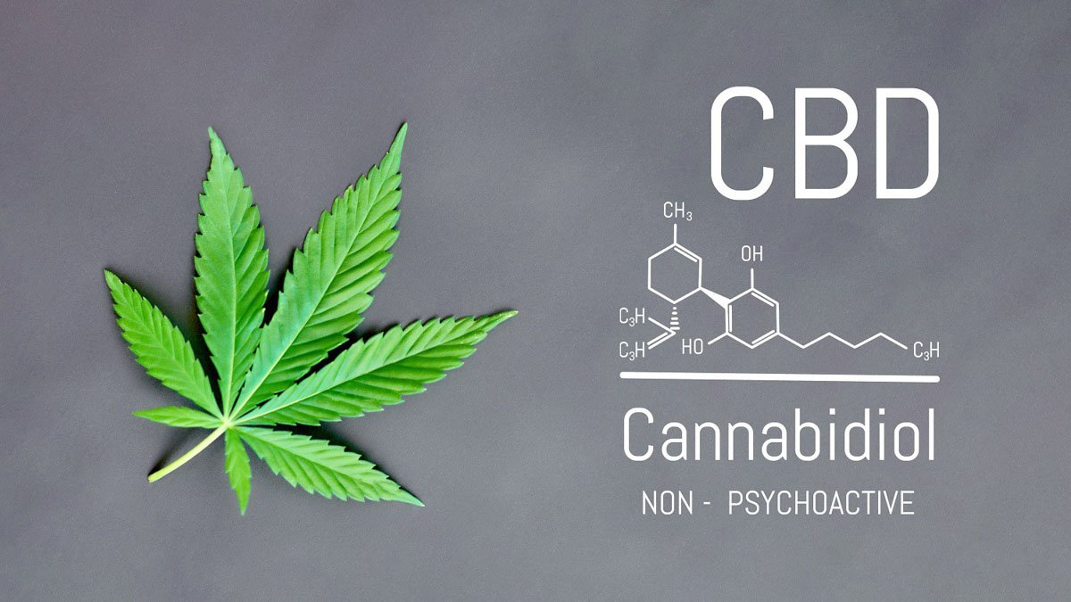 Hemp leaf with CBD chemical structure on grey background