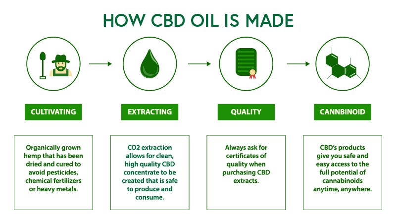 The process of making CBD oil