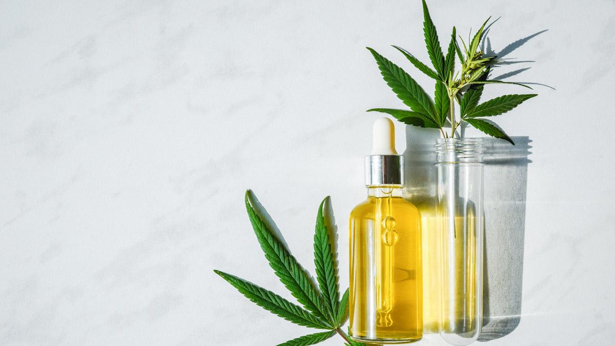 CBD Oil and hemp leaf with grey background